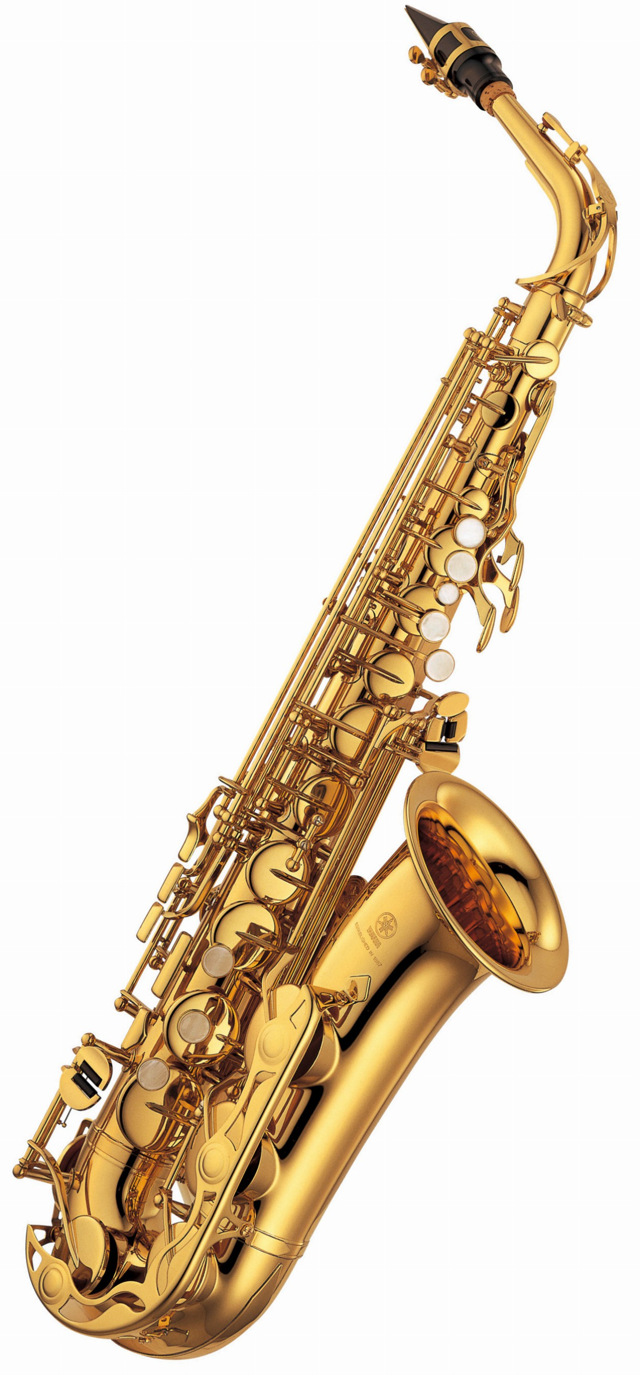 Wargan sax xxxx softcore picture